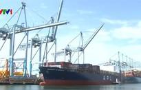 Kinh tế Việt Nam vững vàng giữa rủi ro