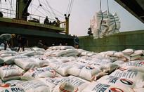 Việt Nam trúng thầu bán 29.000 tấn gạo cho Philippines