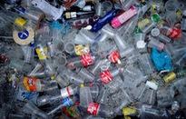Bồ Đào Nha cấm sử dụng sản phẩm nhựa trong cơ quan nhà nước