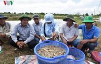 Thành lập Quỹ hỗ trợ phát triển ngành phụ phẩm tôm Việt Nam