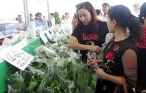Đẩy mạnh cung cấp sản phẩm nông nghiệp sạch