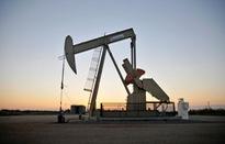 Giá dầu thế giới phục hồi nhẹ