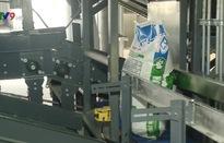Long An: Ứng dụng thành công robot trong sản xuất thức ăn chăn nuôi