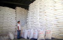 Tiếp tục thông quan tinh bột sắn của Việt Nam