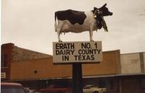 Trải nghiệm phiên đấu giá bò ở Texas
