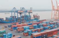 Sẽ tiêu hủy container phế liệu vi phạm không có người nhận