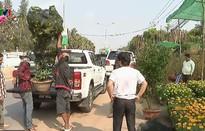 Chợ hoa Tết ở Phnom Penh, Campuchia