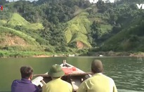 Quảng Nam nỗ lực ngăn chặn nạn khai thác gỗ trái phép