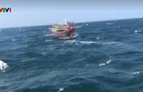 Hải quân cứu tàu cá ngư dân Hải Phòng gặp nạn trên biển