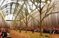 Chanel biến khu rừng lá vàng thành sàn diễn thời trang