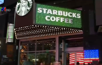CEO Starbucks được ca ngợi vì cách ứng xử với bê bối