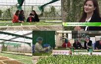 """Cùng BTV Huyền Châu khám phá thế giới rau mầm trong """"Chuyến đi màu xanh"""""""