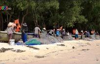 Nét độc đáo của làng chài cá trích, Phú Quốc