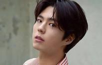 Park Bo Gum xem xét nhận vai diễn mới