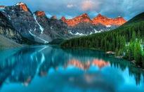 Những khu rừng đẹp nhất thế giới