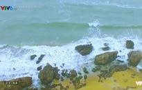 Biển Đông du kí: Khám phá những mũi đất ghi dấu Việt trên Biển Đông