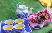 Bạn bè quốc tế nói gì về trà sen Hà Nội?