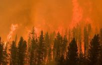Cháy rừng lan rộng tại bang California, Mỹ