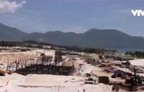 Khánh Hòa: Nhiều dự án bất động sản lấn rừng ngập mặn