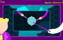Nhóm bạn trẻ TP.HCM làm video hoạt họa khoa học