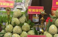 Kết nối tiêu thụ nông sản các tỉnh biên giới Việt - Trung