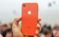 """iPhone XR chưa ra mắt, smartphone Android đã sợ """"mất vía"""""""