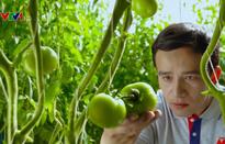 Xây dựng chuỗi cung ứng thực phẩm an toàn trong nông nghiệp