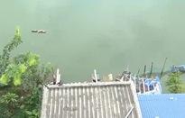 Đất ao hồ bị biến hóa chuyển đổi thành đất ở
