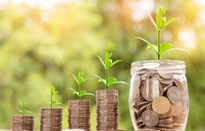 Nhiều doanh nghiệp có hoạt động kinh doanh tích cực trong quý III/2018