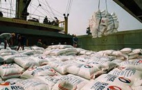 Đẩy mạnh phát triển sản phẩm gạo quốc gia