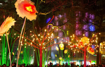 Thủ đô London, Anh rực rỡ trong lễ hội ánh sáng