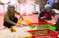 Làng sản xuất bánh kẹo truyền thống Cổ Hoàng tất bật dịp Tết đến