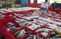 """Ghi nhận những nỗ lực gỡ """"thẻ vàng"""" cho thủy sản Việt Nam"""
