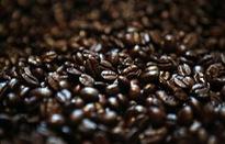 Giá cà phê tăng mạnh