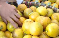 Cơ hội mua nông sản an toàn tại Tuần lễ Cam và Nông sản Hưng Yên 2019