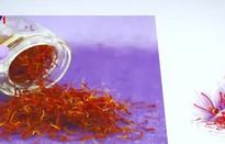 Nhụy hoa nghệ tây được phân phối chính thức ở Việt Nam