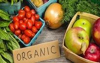 Xu hướng Organic - Sống xanh, sống khỏe