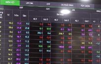 Cổ phiếu cô đặc - Rủi ro hay lợi nhuận?