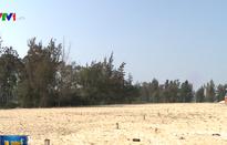 Sốt đất ven biển Quảng Nam là thật hay ảo?