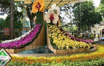 Khai mạc Festival Hoa Lan Tp. Hồ Chí Minh