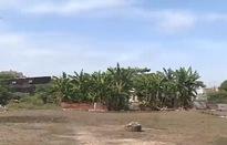 TP.HCM: Cảnh báo đất nền phân lô bán trái phép