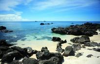 """""""Thiên đường san hô"""" ở Đảo Bé, Lý Sơn"""