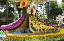 Lễ hội Hoa lan TP.HCM tổ chức định kỳ 2 năm/lần