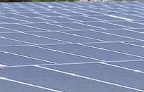 Doanh nghiệp chạy đua hoàn thành dự án điện mặt trời