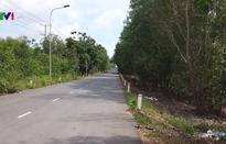 Bình Thuận chưa cấp phép cho dự án Alibaba Newtimes City Thắng Hải