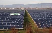 Năng lượng tái tạo chiếm 44% tổng sản lượng điện tại Đức