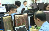 VnIndex tăng gần 10 điểm nhờ cổ phiếu vốn hóa lớn