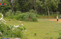 Vì sao dự án tự phân lô bán nền nở rộ tại ngoại thành Hà Nội?