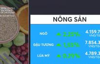 Nông sản và kim loại tăng giá