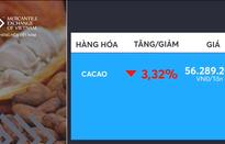 Giá cacao hợp đồng kỳ hạn tháng 9/2019 giảm mạnh